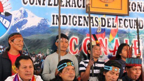 SARAYAKU: retumban los tambores en la selva y un triunfo histórico para Ecuador