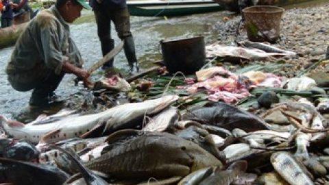 El ritual dela cacería y la pesca