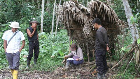 Boletín de prensa Sarayaku