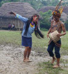 Bayle Tipico de Sarayaku-kajawan tushuy