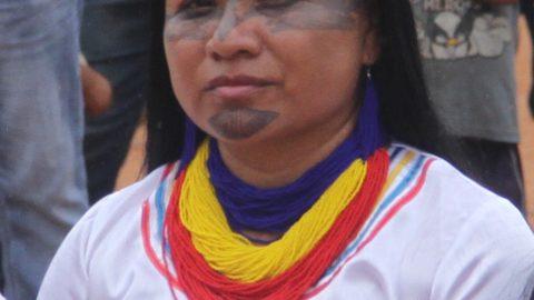 Audiencia tematica sobre Extractivismo Lima Peru.