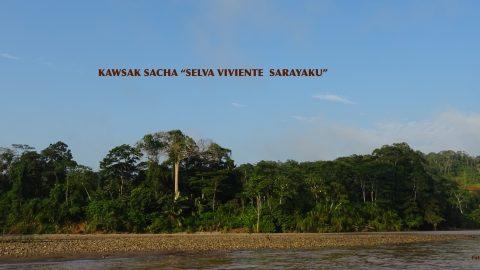 Registro de la propuesta del kawsak Sacha en el Instituto Ecuatoriano de la Propiedad Intelectual.
