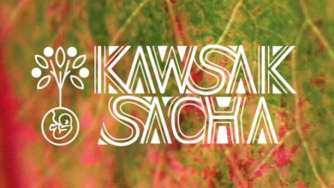 Kawsak Sacha – Selva Viviente