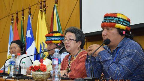 Asamblea Nacional con las organizaciones indígenas del Ecuador en conversación con la relatora  de asuntos indígenas de la ONU Vicky Taulis-Corpuz