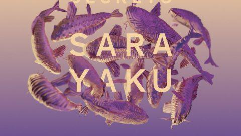 """Proyecto """"Secret Sarayaku"""" de Misha Vallejo"""